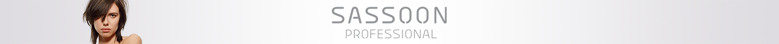 PNG_LowRes-Wellastore_Sassoon_Subcategory-Banner_Professional_1601x92.png